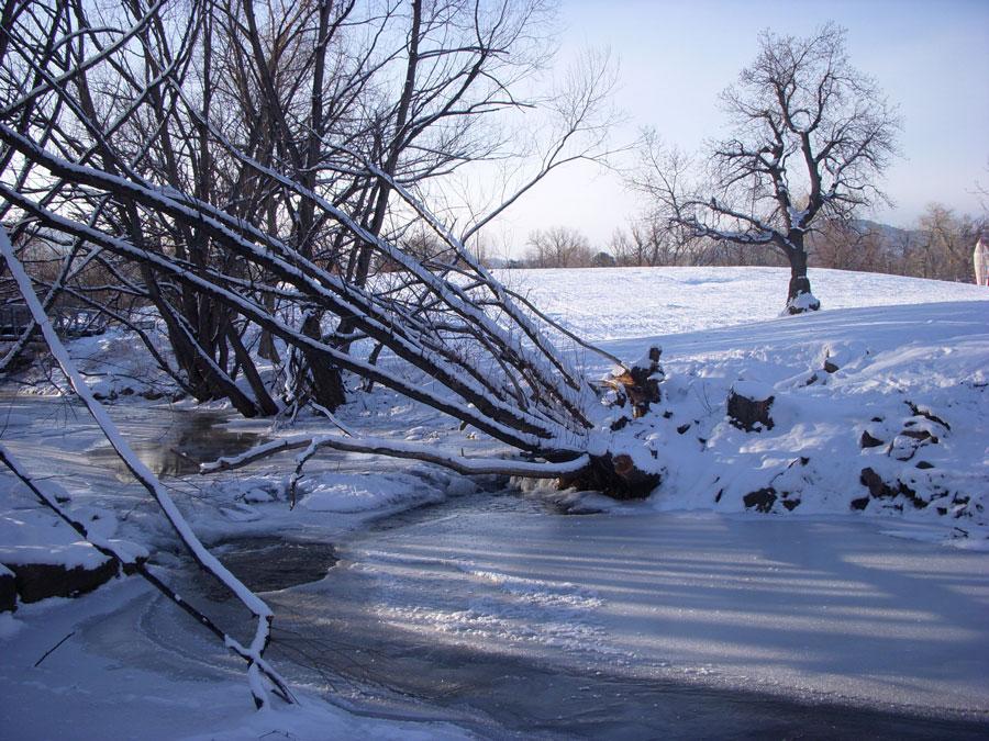 Merevin visits a very frozen Boulder Colorado.