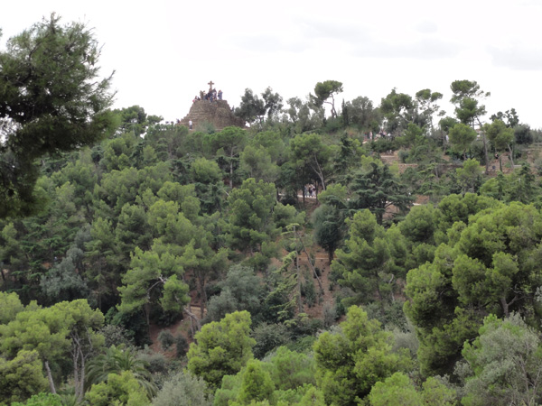Lovely trees at Park Güell on go all the way up the hillside.