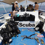 Island Hopping and Scuba Diving