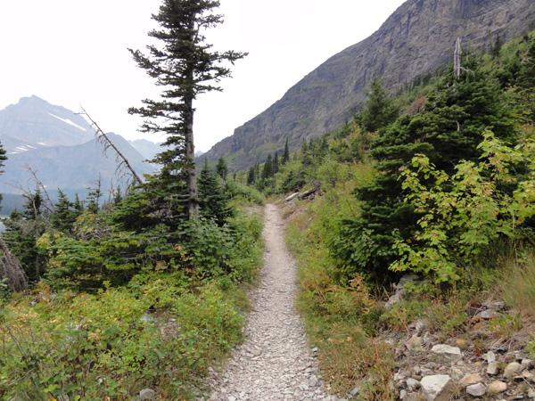 grinnell-glacier-beginning-hike-merevin-10