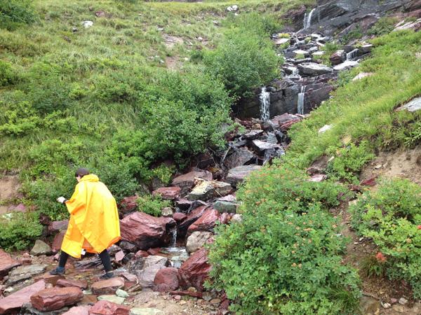 grinnell-glacier-beginning-hike-merevin-26