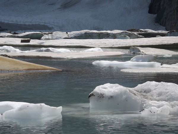 Large pieces of ice float on the water at Grinnell Glacier.