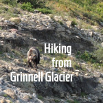 Hiking Back from Grinnell Glacier