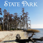 Fontainebleau State Park with Merevin