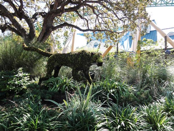 busch-gardens-tampa-merevin-09