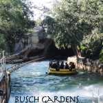 Busch Gardens Birthday