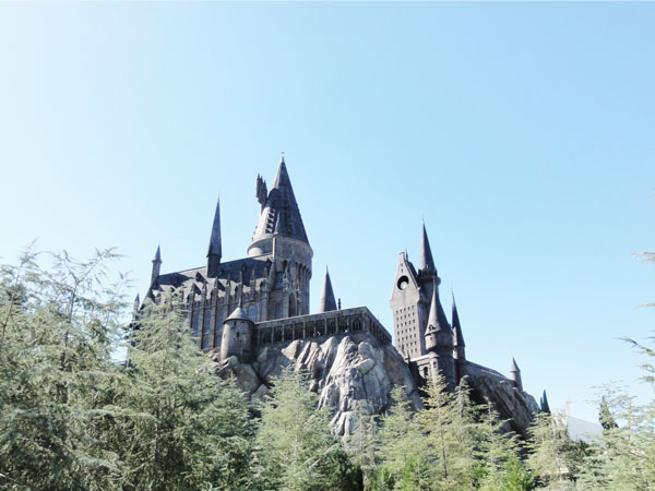 wizarding-world-harry-potter-honeydukes-merevin-01