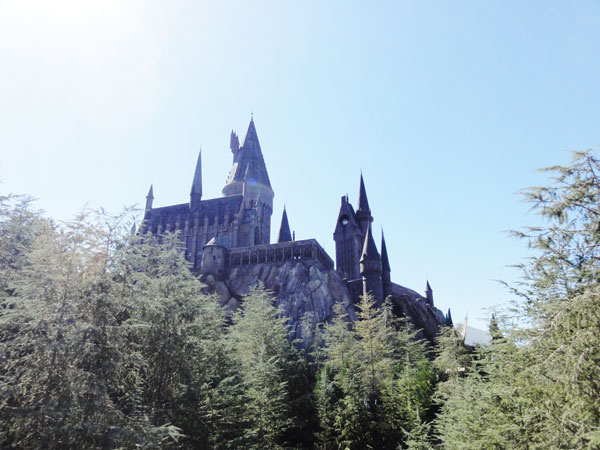 wizarding-world-harry-potter-merevin-01