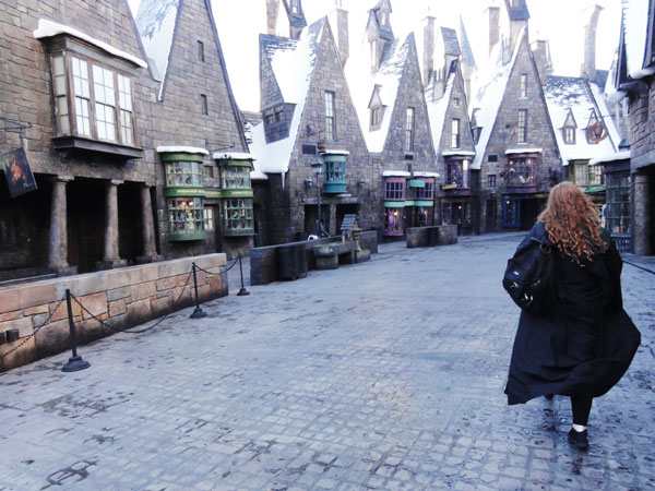 wizarding-world-harry-potter-merevin-02