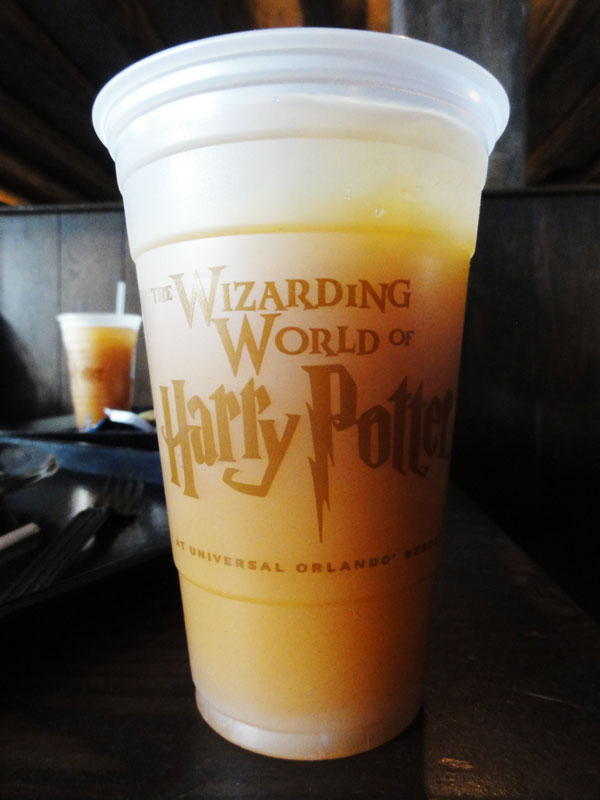 wizarding-world-harry-potter-merevin-07