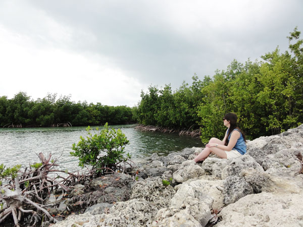 Meredith Lambert enjoys the peace of the mangrove estuary at Bill Baggs Florida State Park for her Miami travel blog.