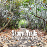 Hiking the Nature Trails at Bill Baggs Florida State Park