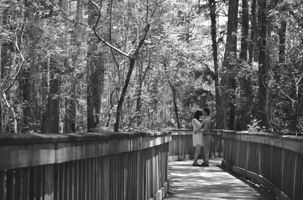 Black and white engagement photo of a young couple in the cypress swamp of the Big Cypress National Preserve.