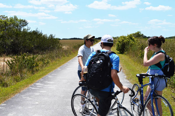 Merevin and friends stop for a breather as they bike Shark Valley on their Miami travel blog.