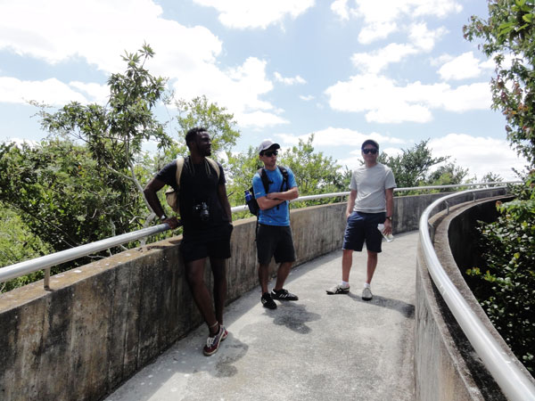 Miami travel bloggers finally reach the Shark Valley observation tower after a 15-mile bike ride.