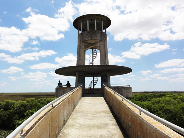 The Shark Valley Observation Tower is a sturdy and interesting structure towering over the Everglades.
