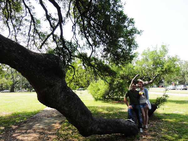 A couple sitting in the bent branches of the Suicide Oak in City Park in New Orleans.