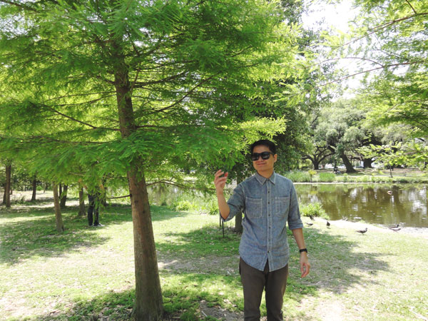 Kevin Banogon examines the textures and colors of the bald cypress trees in City Park.