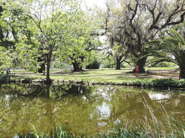 City Park has a very scenic preserved bayou.