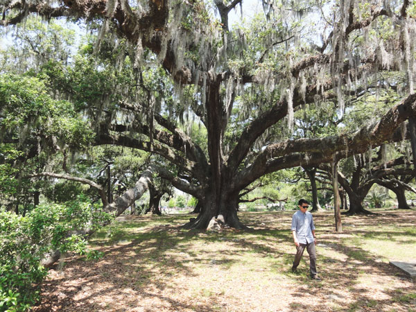 Kevin Banogon under a large, old oak tree in New Orleans' City Park.