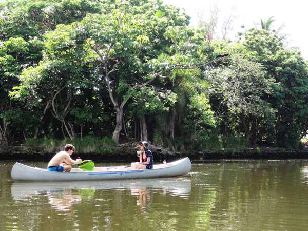 Urban canoeing through Miami's Little River gives you a peek into the backyards of Miami.