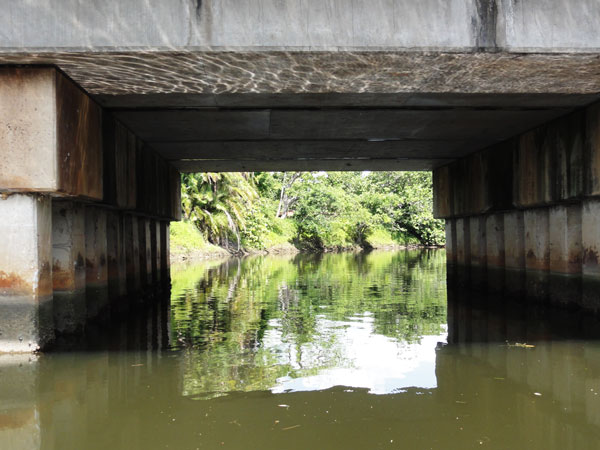 Canoeing under small bridges along Miami's Little River.