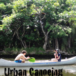 Urban Canoeing in Miami's Little River
