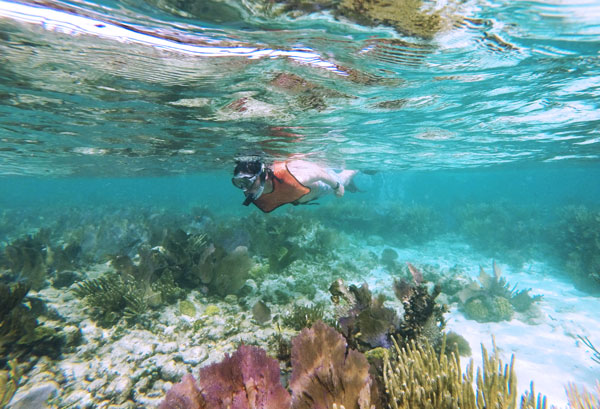Kevin Banogon snorkels above the shallow reef at the Grecian Rocks off the coast of John Pennekamp.