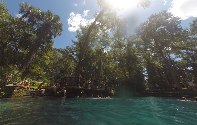 Jumping off the raised platform at Juniper Springs into the 72° water.