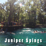 Juniper Springs on Labor Day
