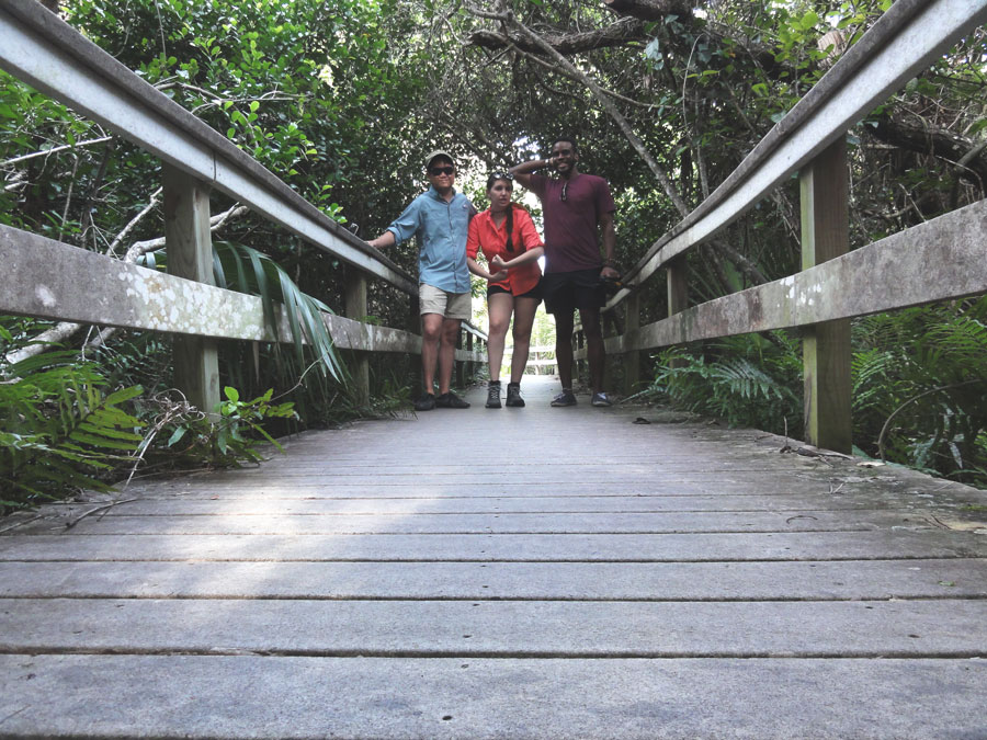 Kevin Banogon, Meredith Lambert, and Devin Thompson explore the trails in the Everglades.