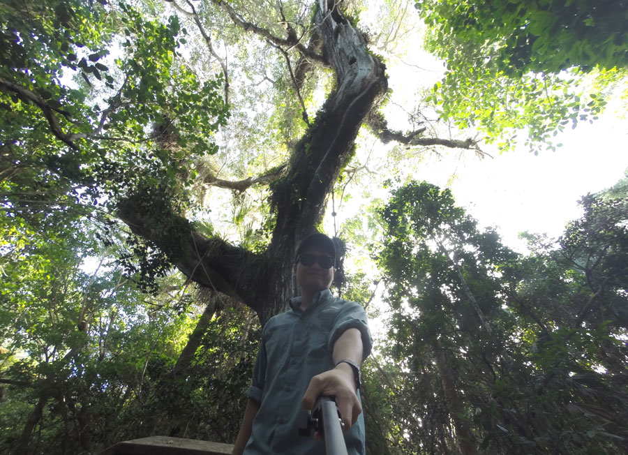 Kevin Banogon takes a selfie with the largest Mahogany Tree in the United States found in the Everglades.