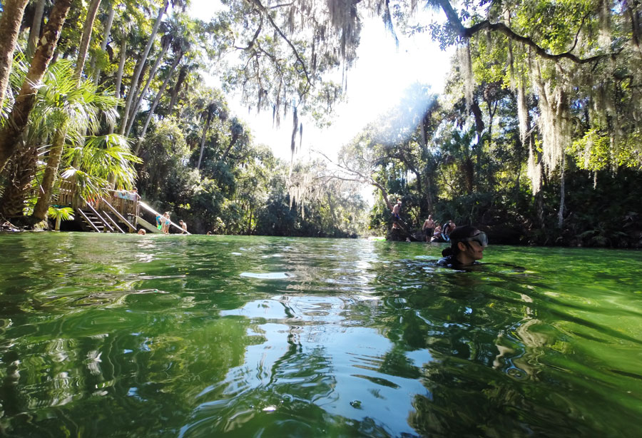 Swimming in the crystal clear waters of Blue Springs State Park is a refreshing break from the Florida sun.