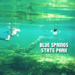 Diving in at Blue Springs