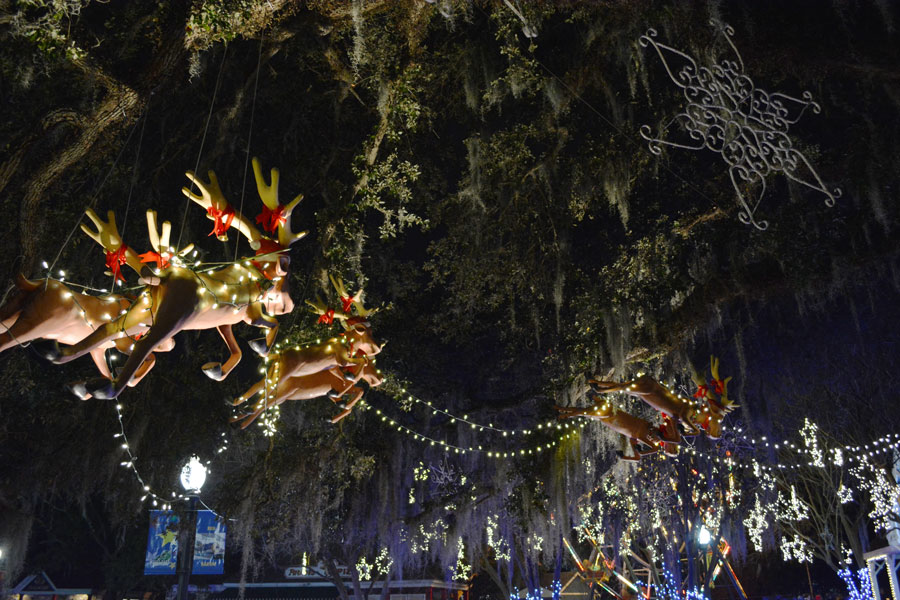 Santa's reindeer in the oak trees at City Park during Celebration in the Oaks.
