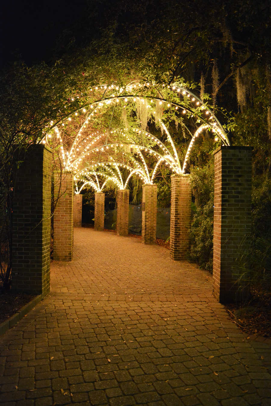 A beautifully light archway in the botanical gardens of City Park.