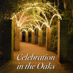Celebration in the Oaks with Merevin