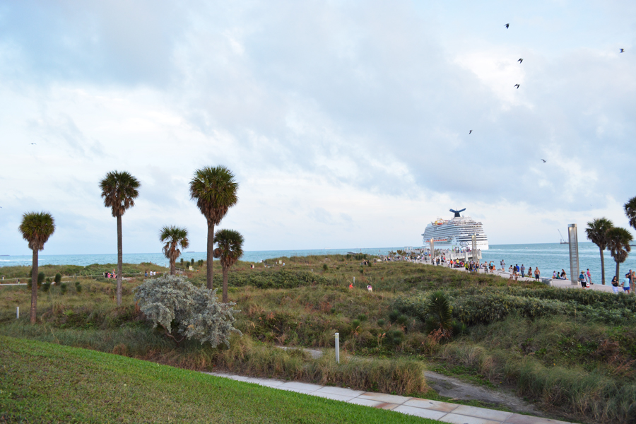 A cruise ship leaves the port through the slip by South Pointe Park.