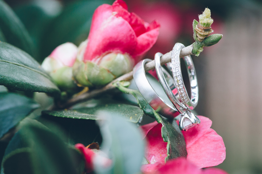 A stunning shot of the Merevin wedding rings in the winter flowers.