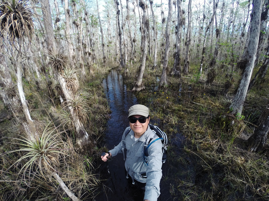 Kevin Banogon hikes to the old growth cypress trees in Big Cypress National Park.