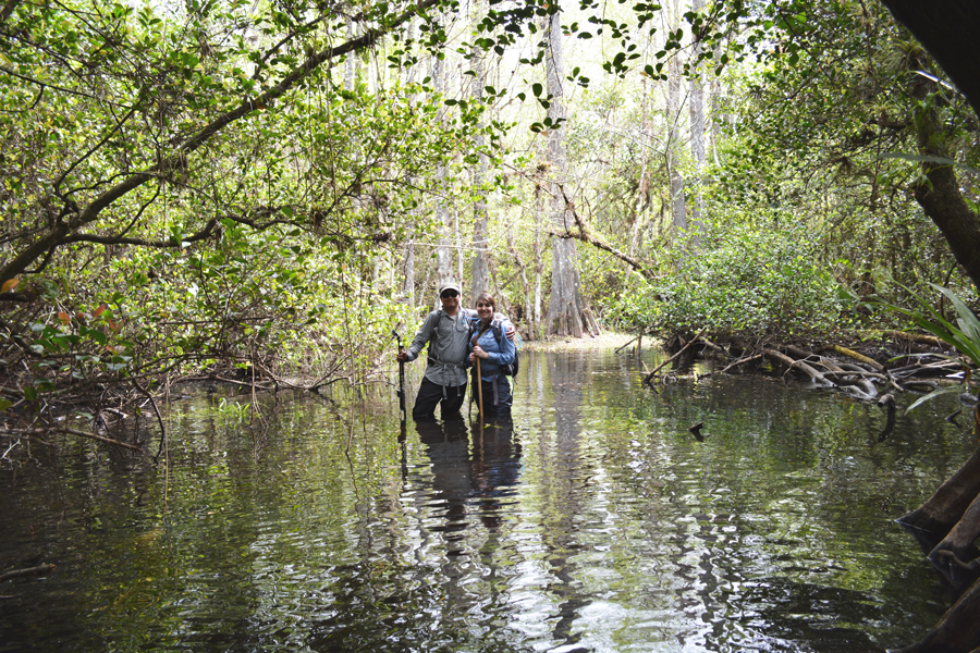 Kevin Banogon and Meredith Lambert Banogon stand in the cypress swamp in Big Cypress National Preserve.