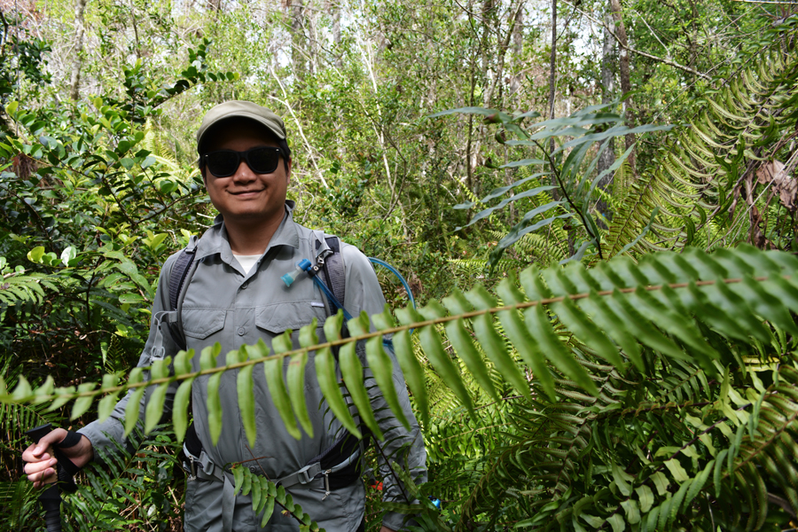 Kevin Banogon stands among the leather ferns along the Florida Trail in Big Cypress National Preserve.