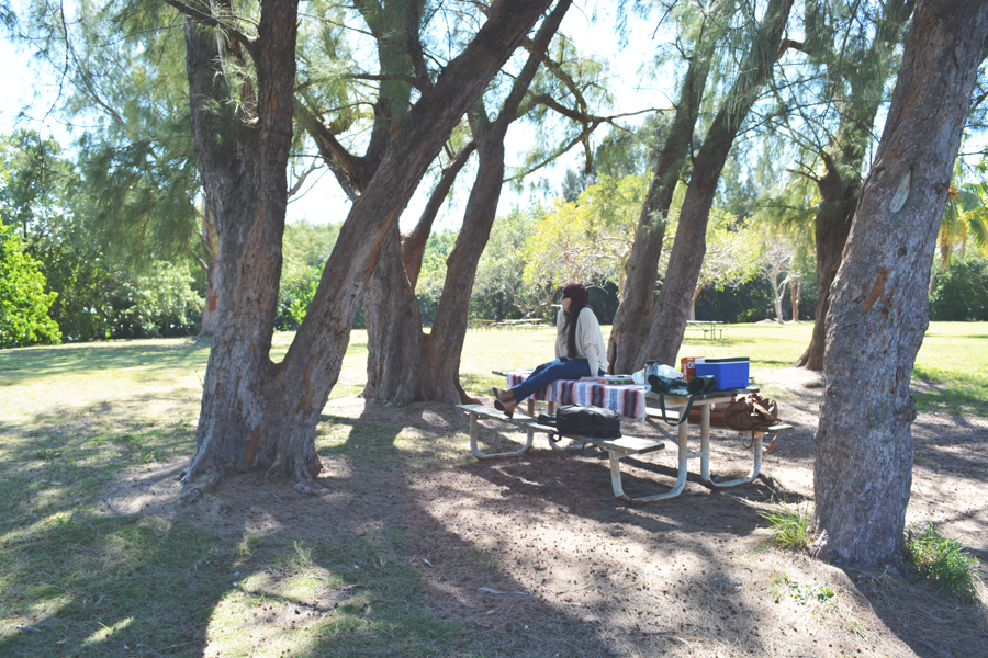 Meredith Lambert enjoys a picnic on Valentine's Day in Matheson Hammock.