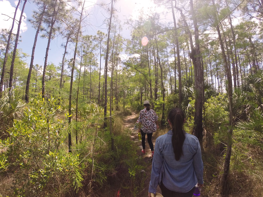 Alicia Doroteo and Meredith Lambert Banogon hike along the Gator Hook Trail in Florida at Big Cypress National Preserve.