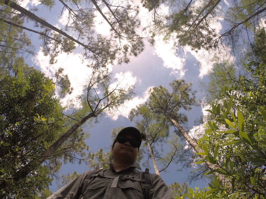 Kevin Banogon enjoys being surrounded by the pine trees in Big Cypress National Preserve on the Gator Hook Trail.