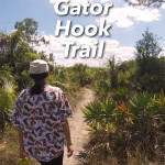 Gator Hook Trail Hike in Big Cypress