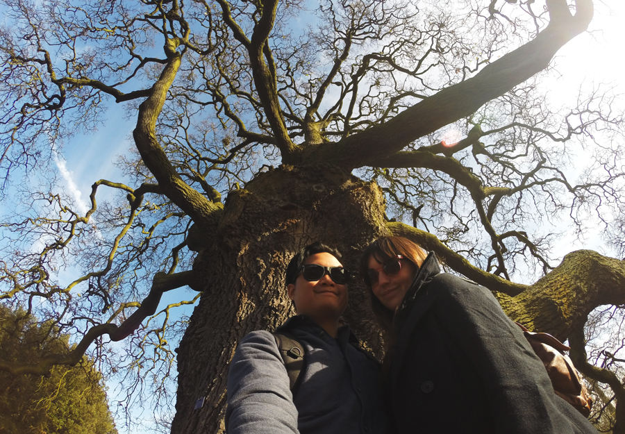Kevin Banogon and Meredith Lambert Banogon pose underneath the Lucombe Oak, a champion tree in the Gardens at Kew.