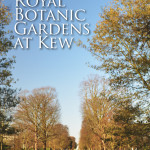 Meandering the Gardens at Kew