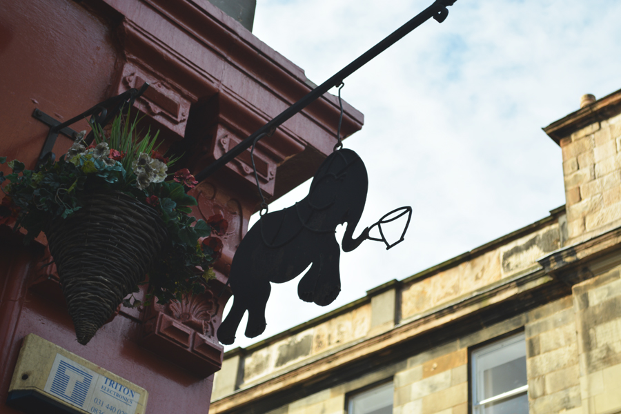 J.K. Rowling wrote the first Harry Potter novels while sitting inside the Elephant House in Edinburgh.