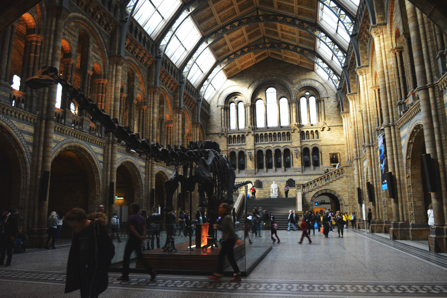The entrance of the Natural History Museum in London, England.